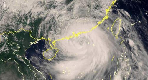 台风过后,这个叫山竹的公司温暖人心