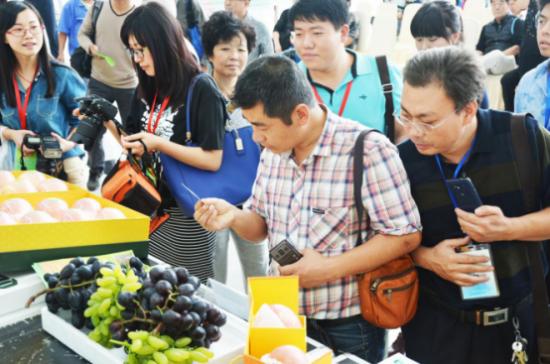 果蔬之乡大放异彩: 第19届国际