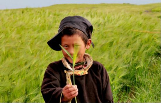 """雅迪E7Li穿行藏区2000公里 解锁川藏线""""新奇""""文化景观-焦点中国网"""