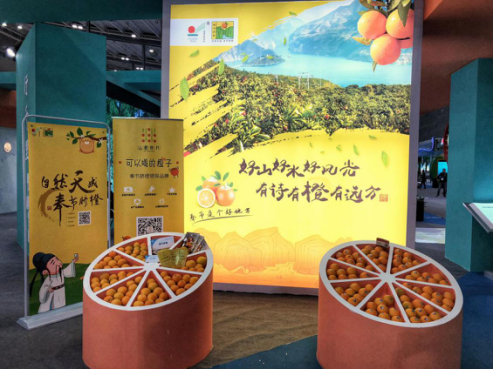 山橙时代亮相第十六届中国国际农产品交易会