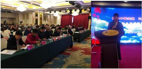 华夏易道文化院率团出席大连经济建设国际论坛