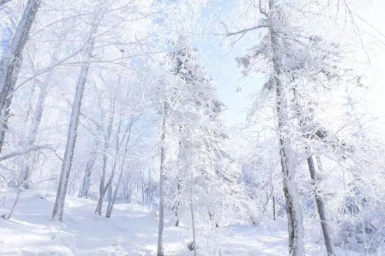行业寒冬中4399认为如何活下去