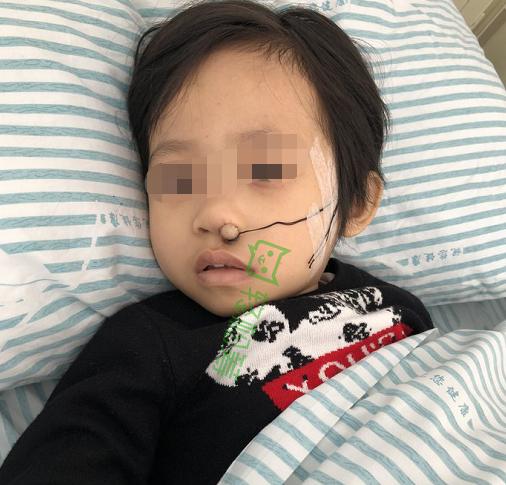 广东三岁女宝突患白血病 轻松筹汇聚社会爱心助其与病魔抗争