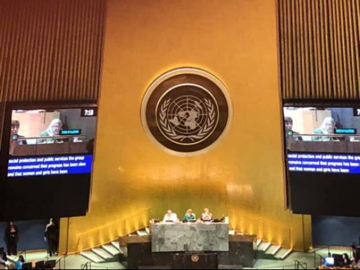 """安格拉·罗总干事出席63届联合国妇女大会"""""""