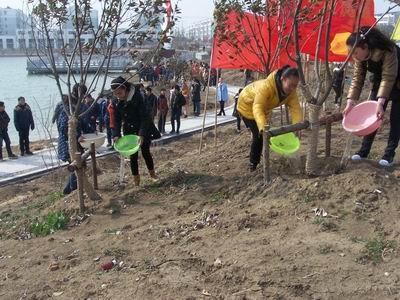 """建兴中学组织师生参加""""播种美丽青春 助力绿色建湖""""植树节主题活动"""