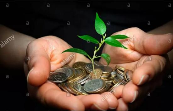 博观财富投资人增收财的好帮手
