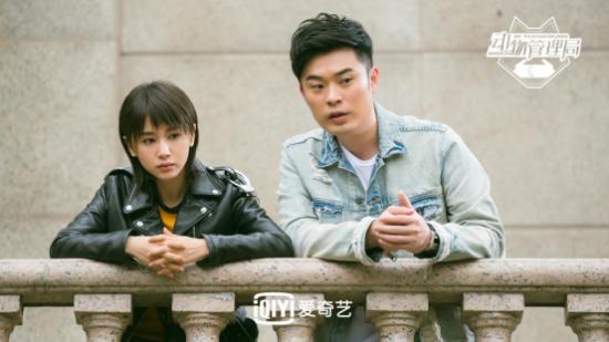 """""""女汉子""""王子文恋上怂萌陈赫 《动物管理局》开启""""土鸡汤""""模式"""